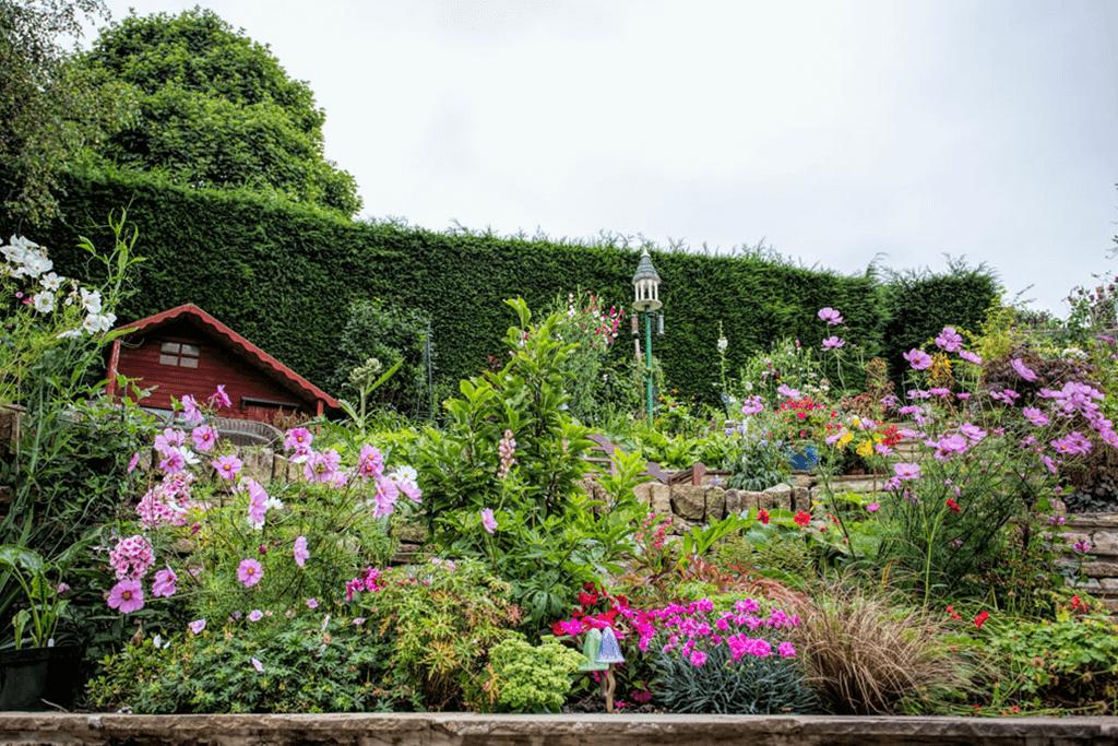 Landscape Creations – Hillside Terraced Garden 1