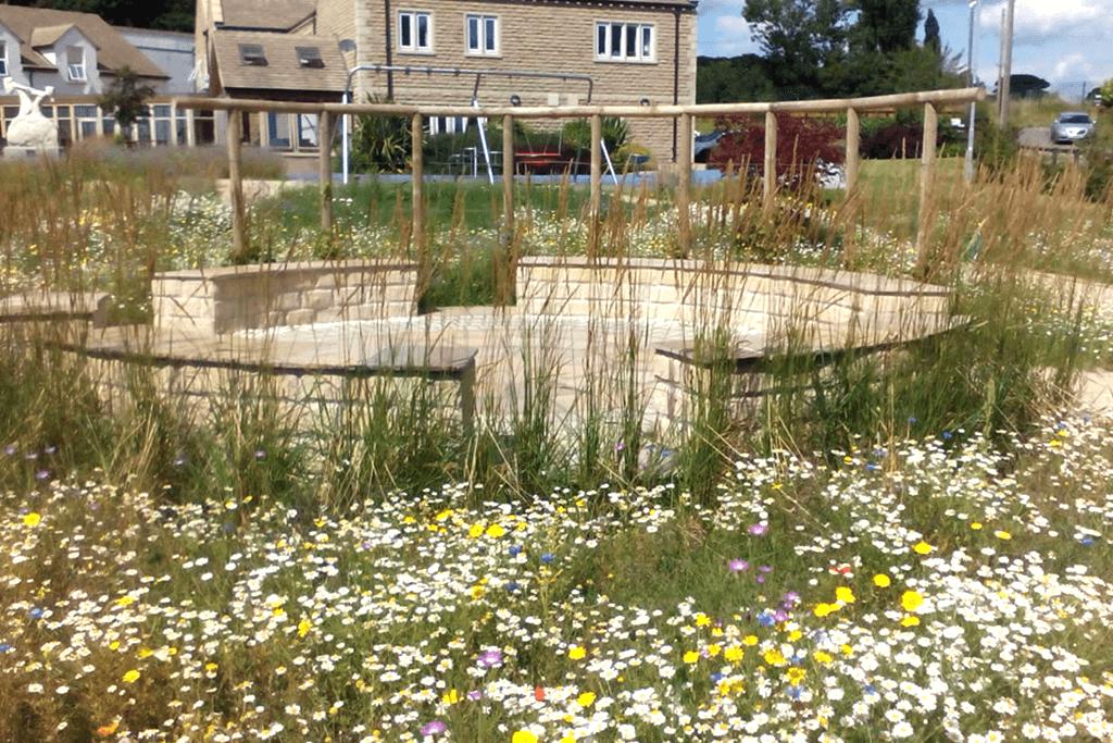 Landscape Creations – Wild Flower Meadow 3