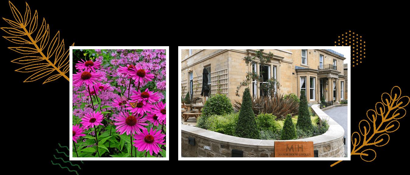 Landscape Creations – Award Winning Landscape Gardeners